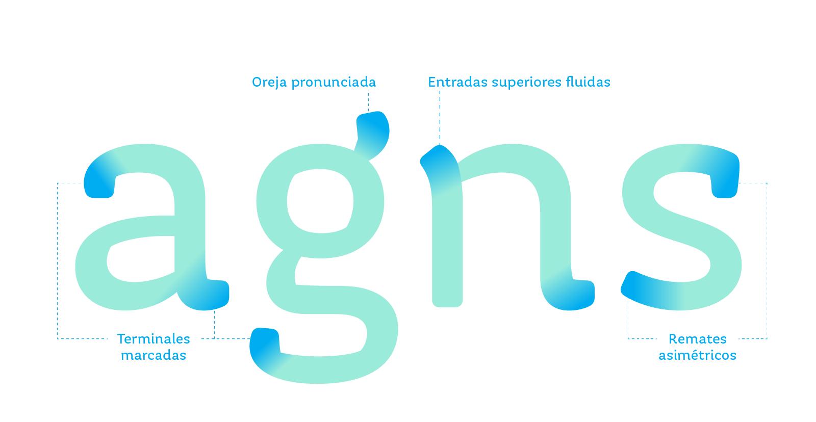 Signos minúsculos a, g, n y s en color verde aqua con indicadores que resaltan en azul las características de las terminaciones de las letras.
