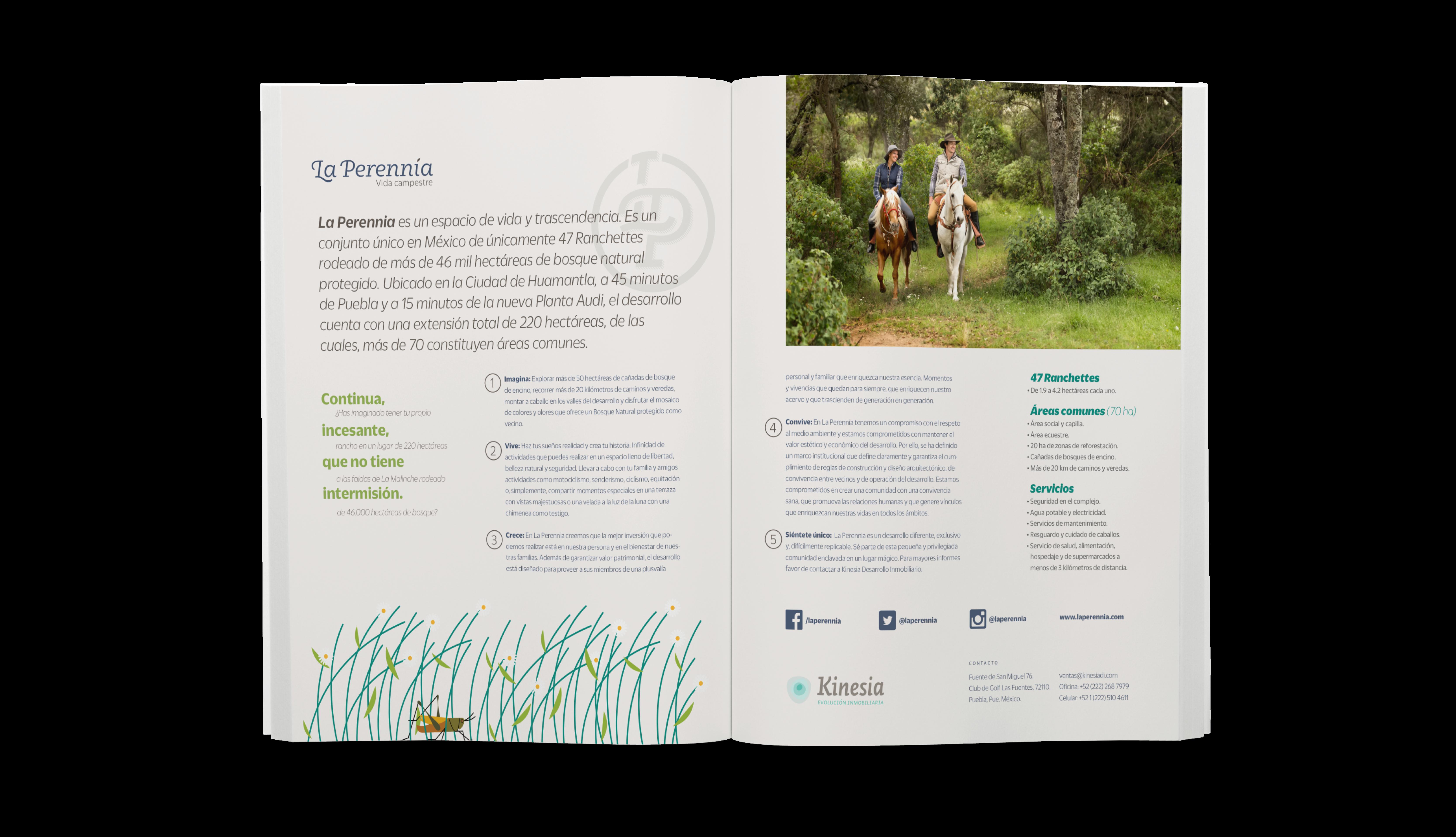 Brochure de La Perennia con especificaciones técnicas y privilegios de vivir en La Malinche
