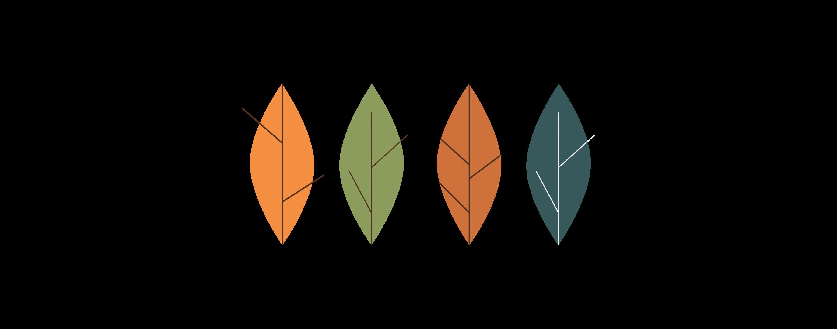 Hojas de diferentes colores