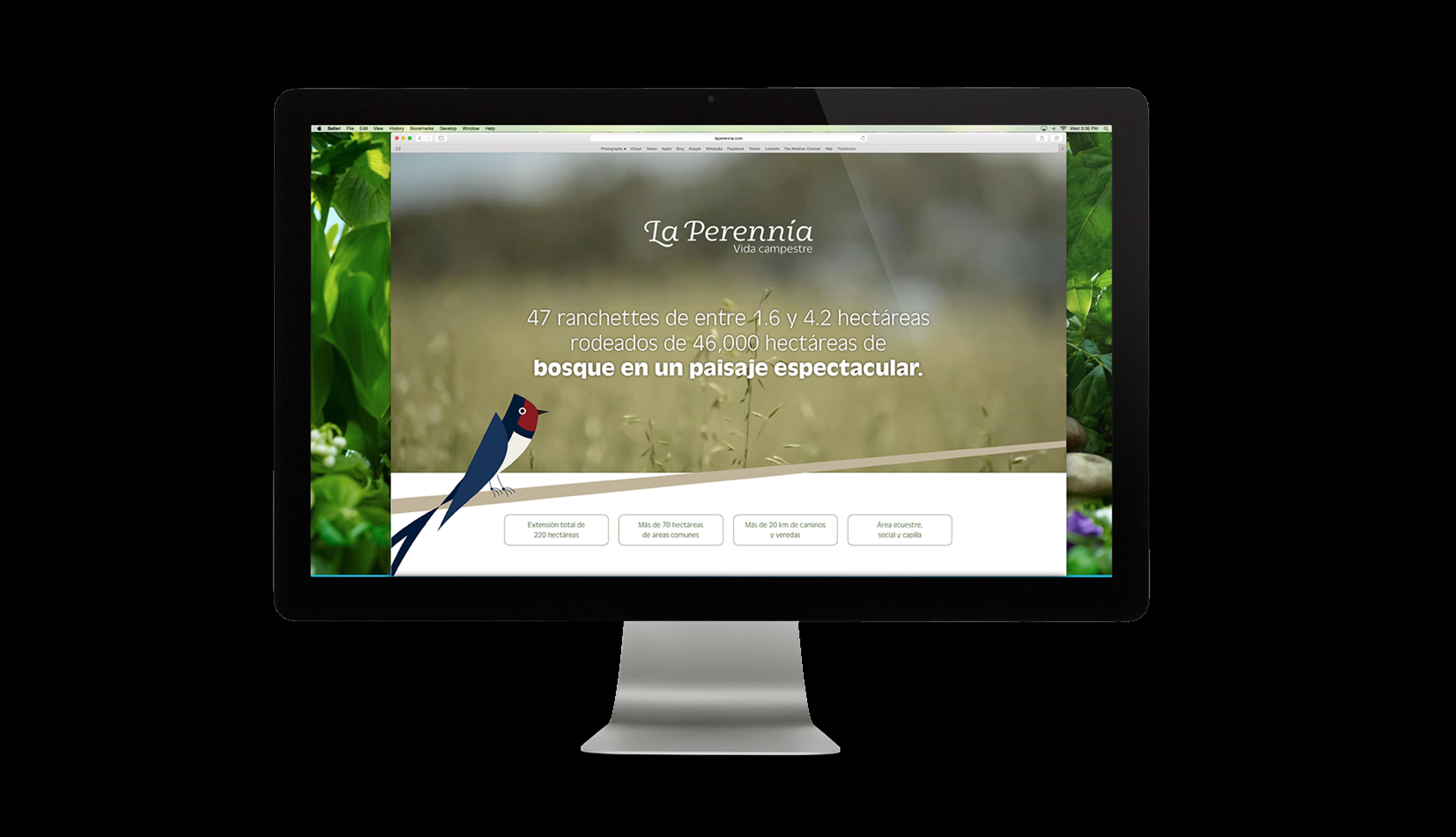 Monitor con la página de La Perennia