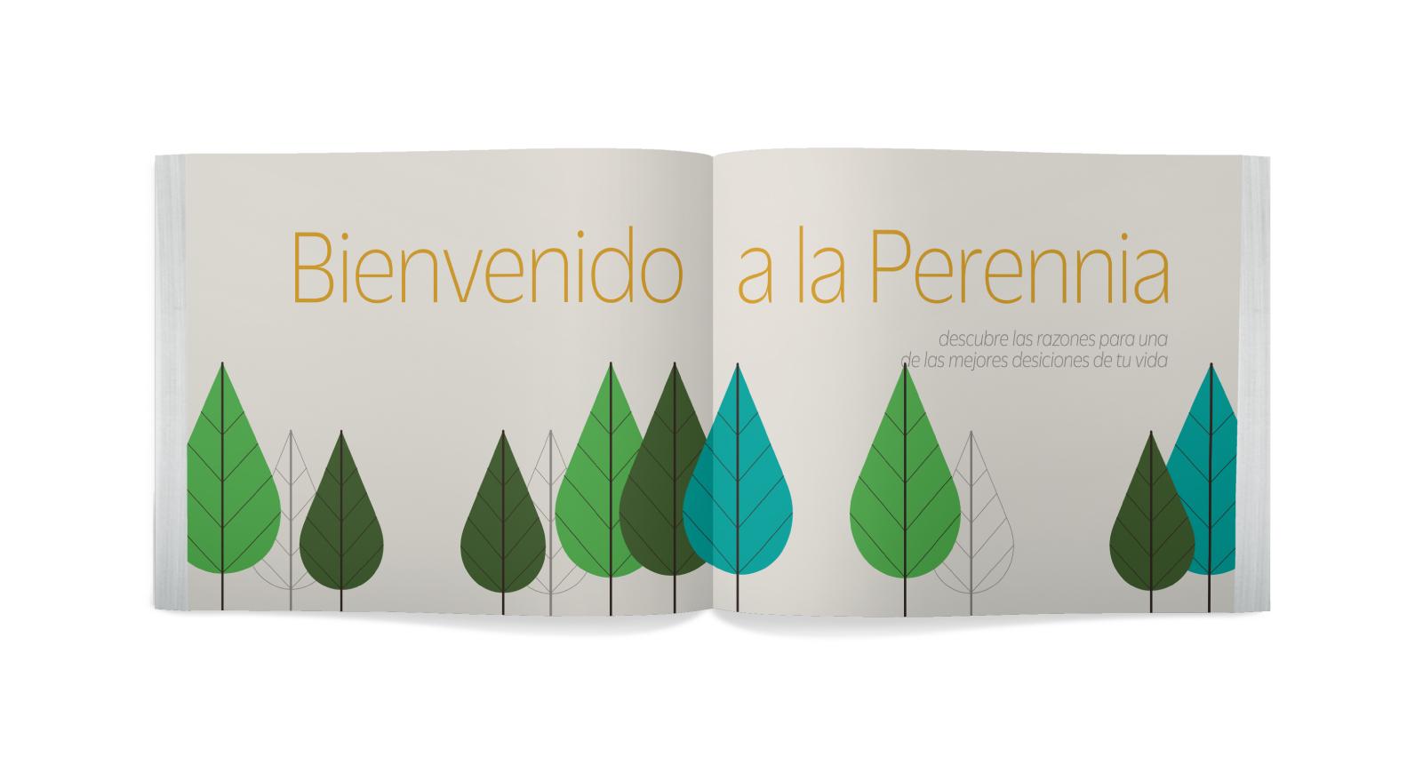 Brochure abierto con ilustraciones de árboles en La Malinche