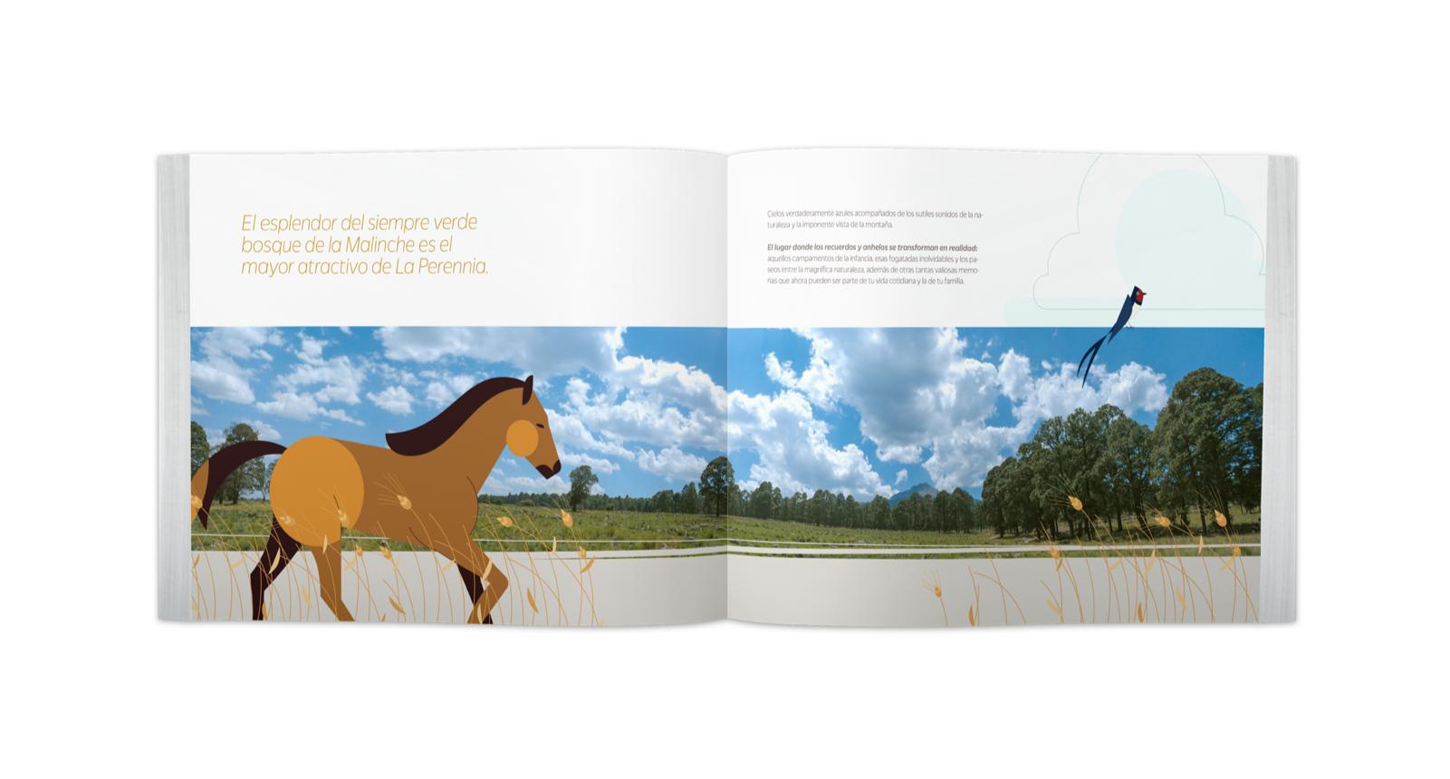 Brochure abierto con ilustracion de un caballo y un pájaro en el bosque de La Malinche