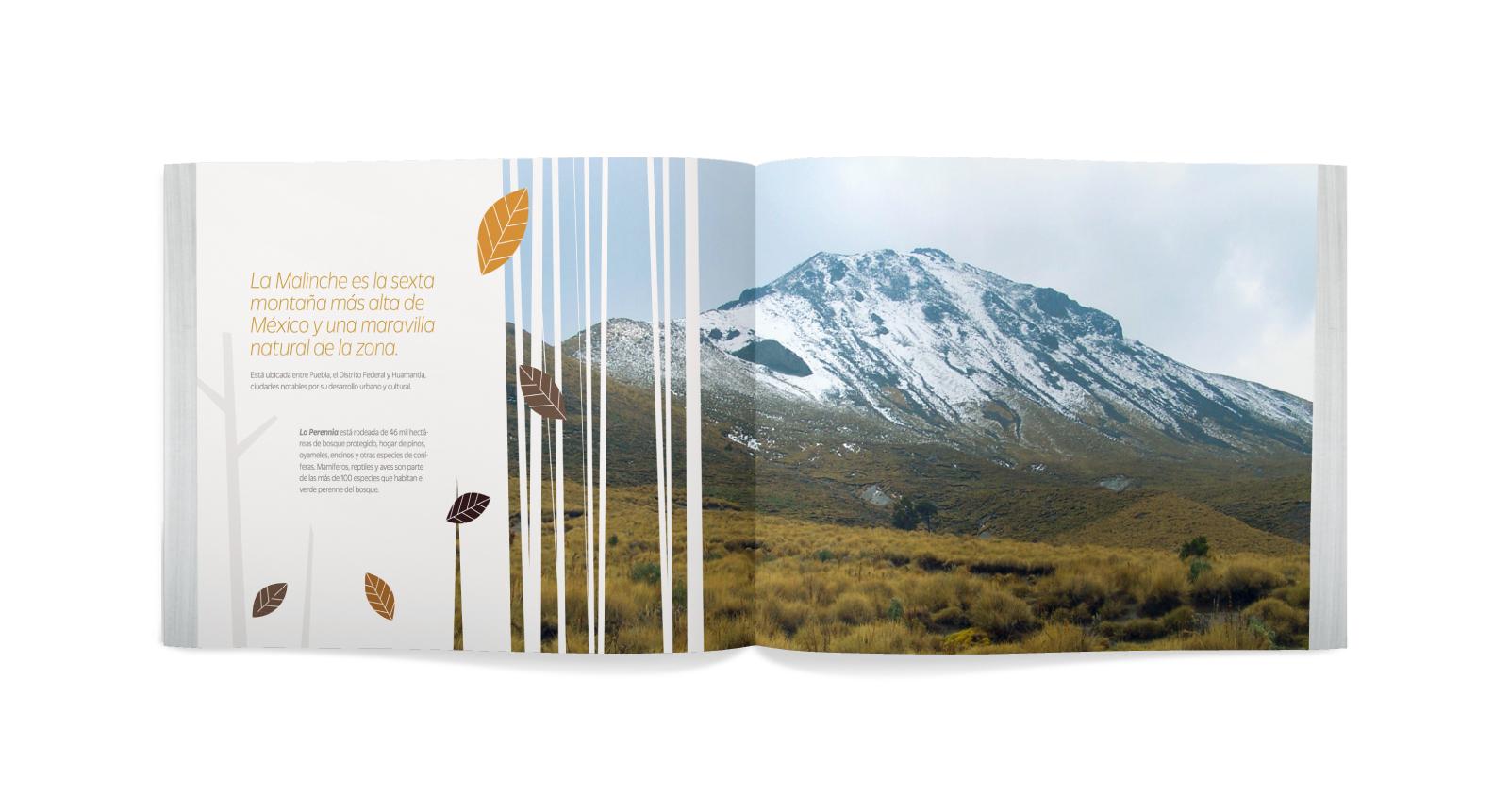 Brochure abierto con ilustraciones de hojas y una foto de La Malinche